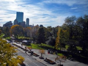 FLS_Boston_Commons_Area_Highlights-(37)