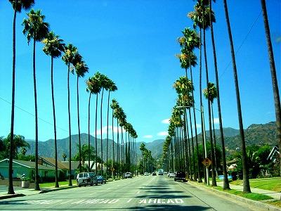 Los_Angeles (1)