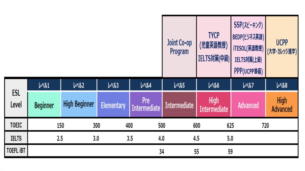 SGICレベルチャート画像